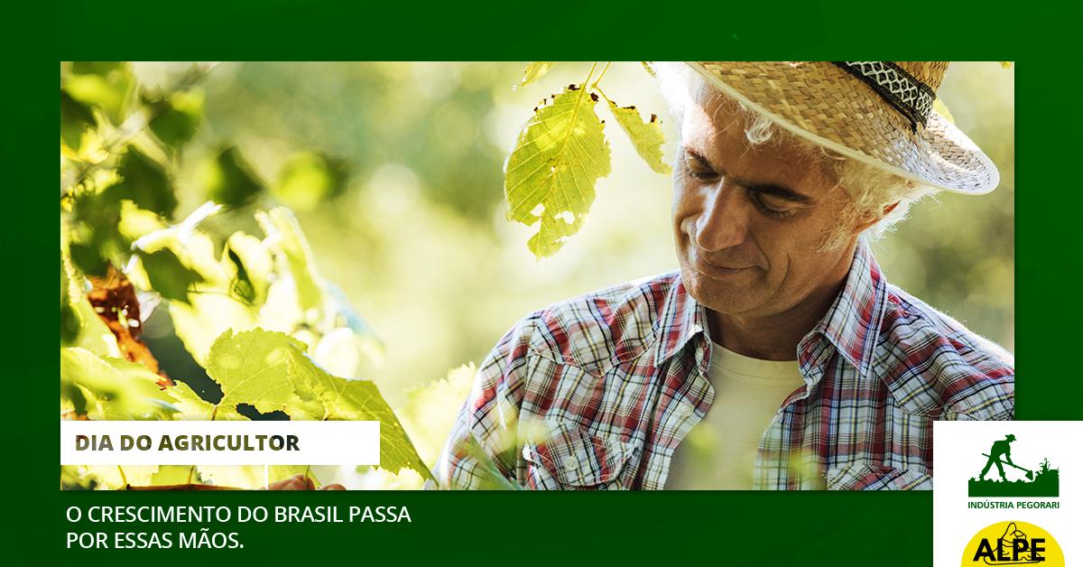 Dia do Agricultor: Saiba como surgiu essa data e porque ela é tão importante