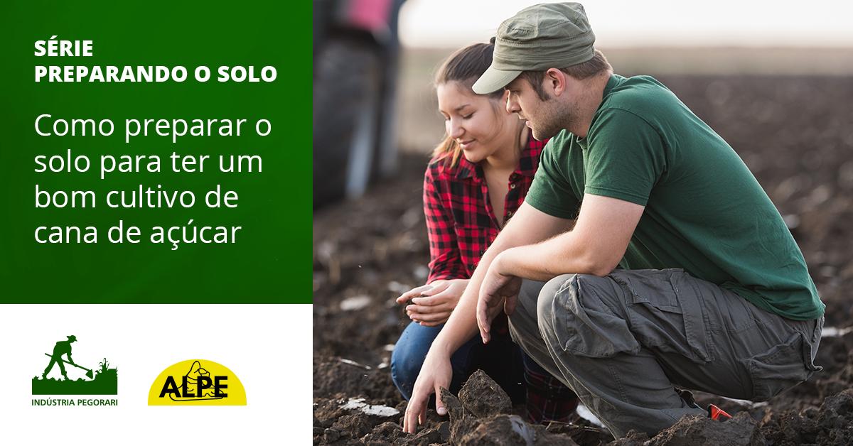 Como preparar o solo para ter um bom cultivo de cana de açúcar.
