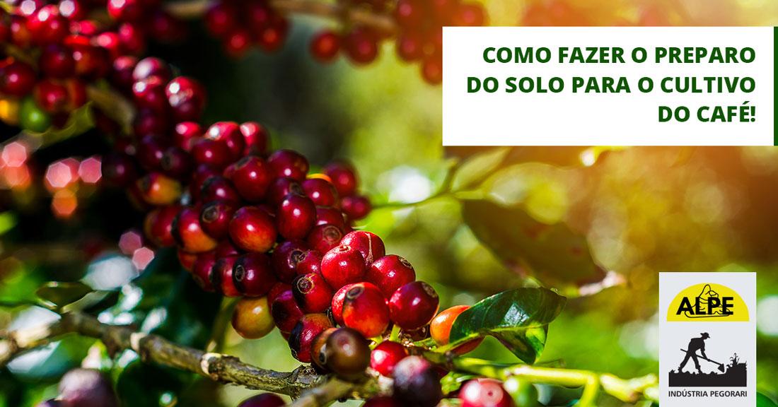 Como preparar o solo para ter um bom cultivo do café