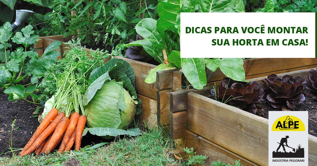 O que você precisa saber para montar uma horta