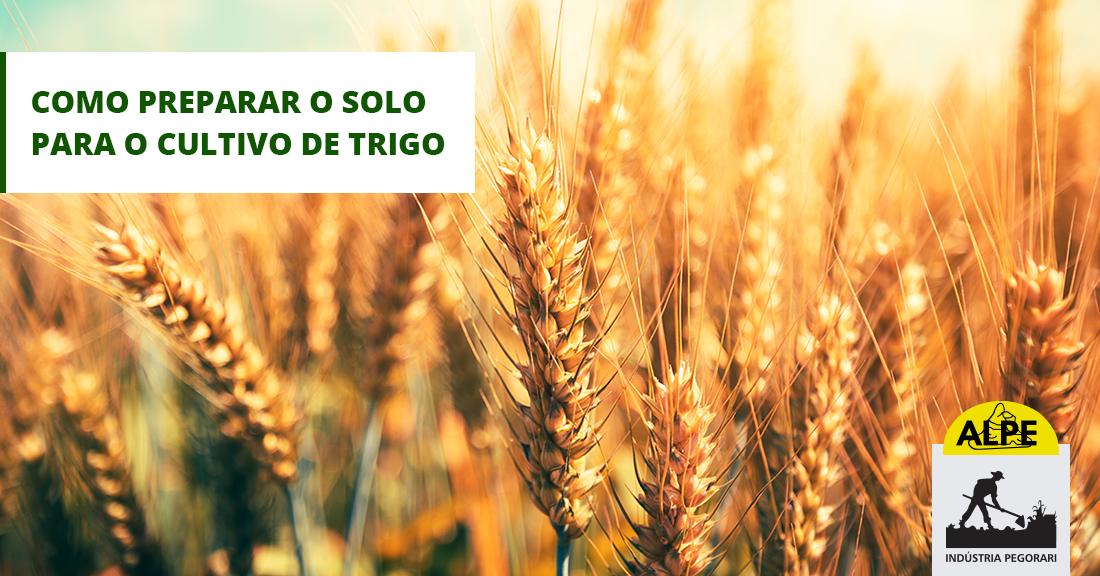 Preparo do solo: Plantação de trigo